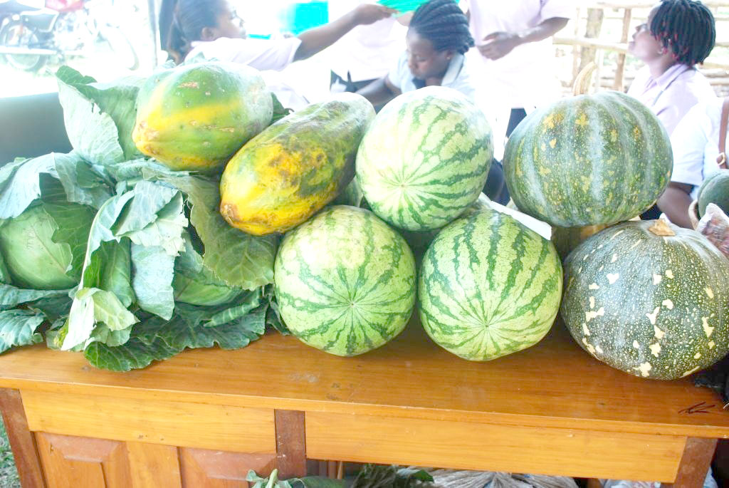 Farm school trainees exhibit at their stall what they have harvested