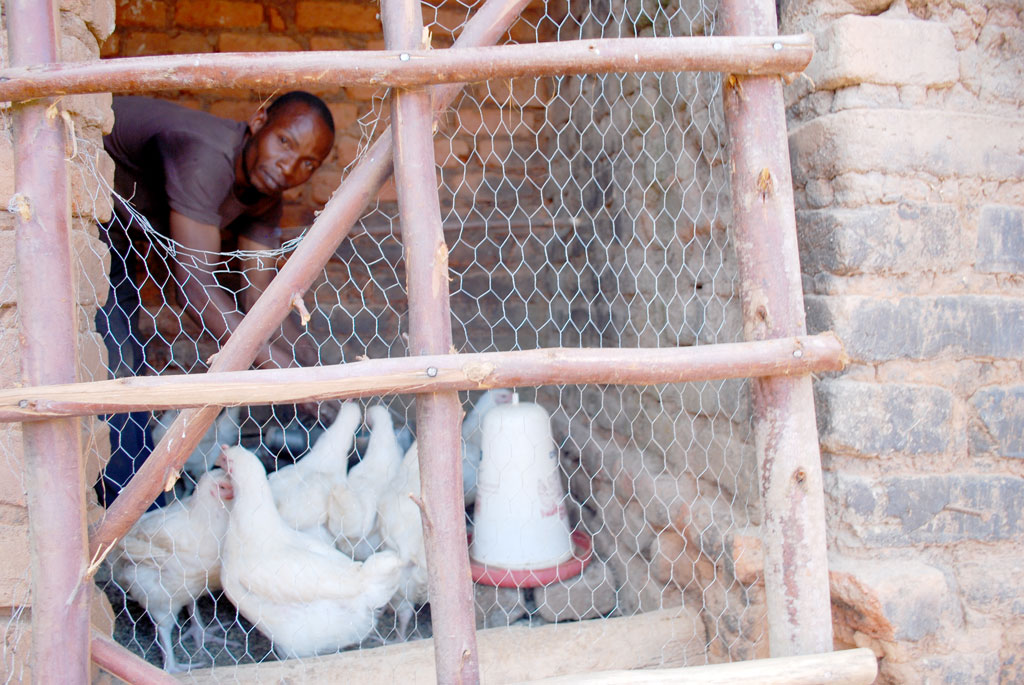 Sebowa inside his poultry farm at home which also boosts his household income
