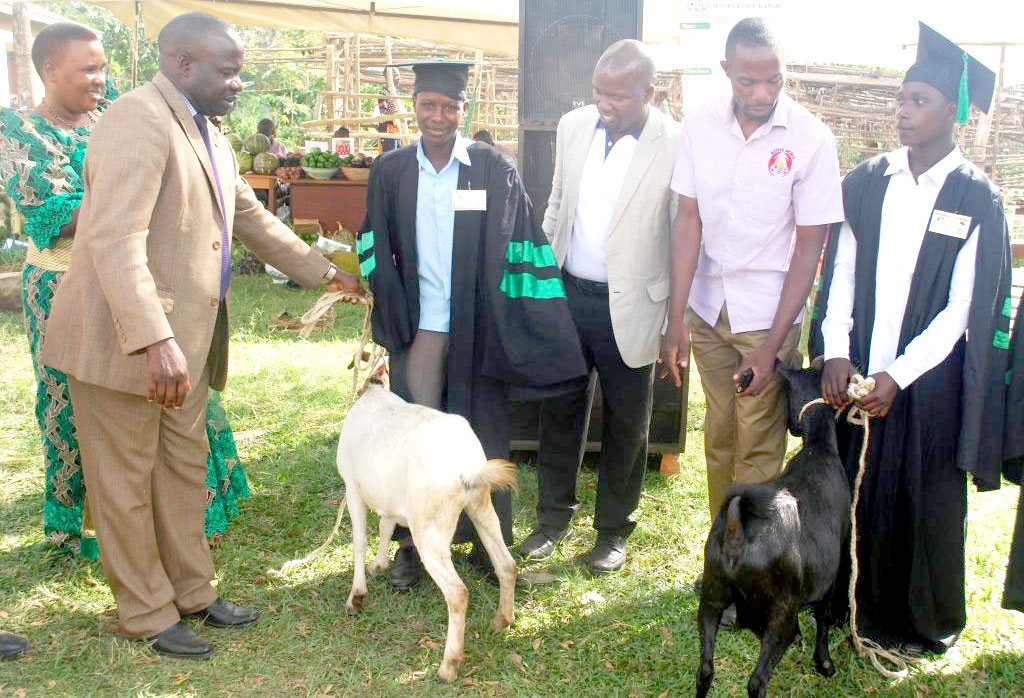 Some of the exceptional trainees recieve their rewards with hybrid breed goats.